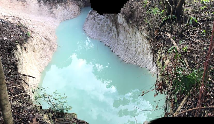 La cabaña cuenta con un Cenote particular !!!