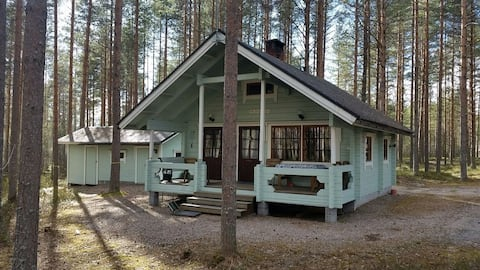 Metsäkanerva Cozy cottage in central Finland