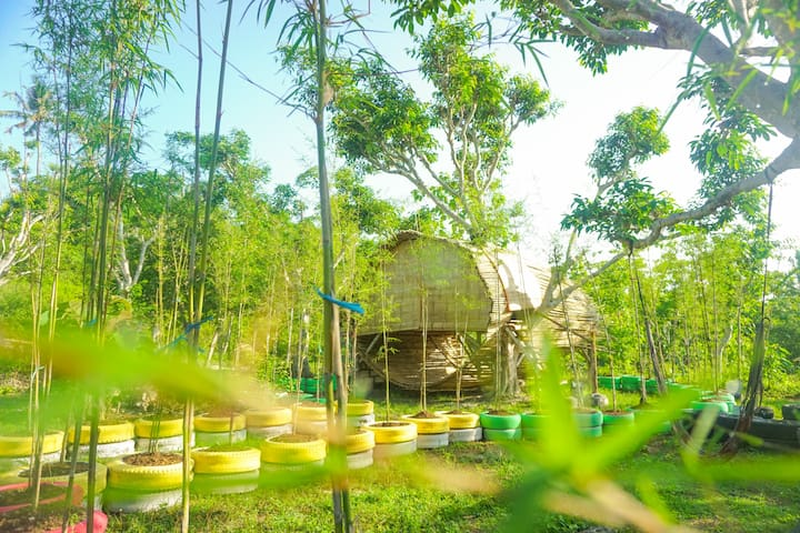 Bamboo  Garden  View  with  bathtub # eco project