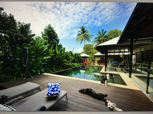 """Ocean eyes getaway"" - Port Douglas - House"