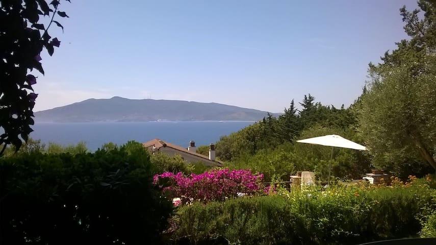 beautiful villa and fantastic pool - Ansedonia - Villa