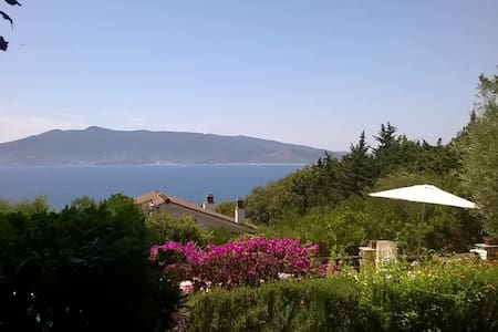beautiful villa and fantastic pool - Ansedonia