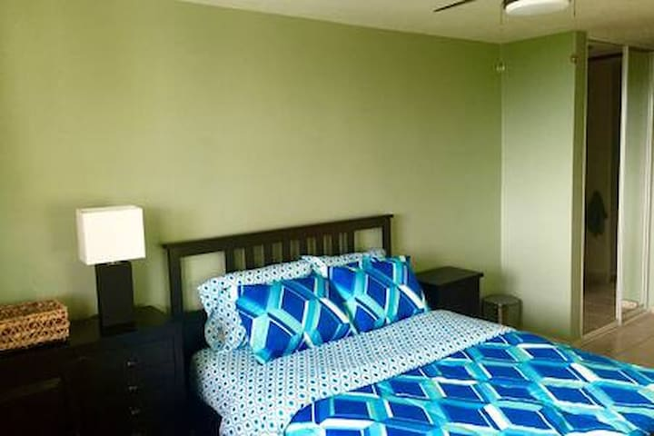 This is the master bedroom. It has a super comfy queen size bed and dual closets.
