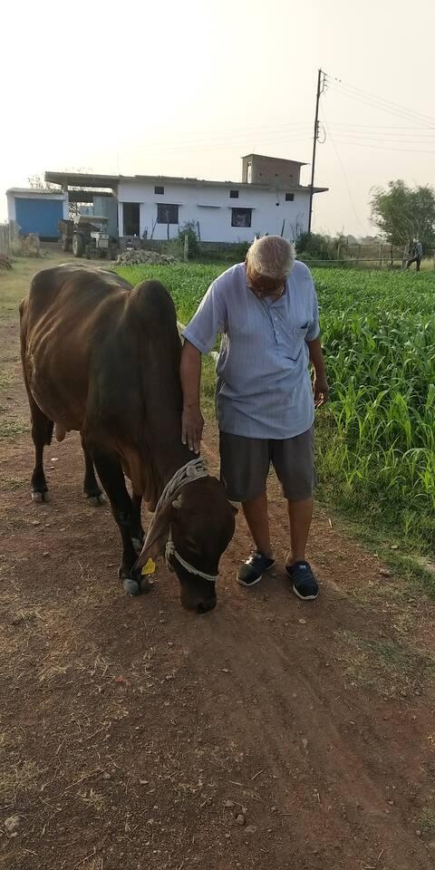 DEVINE HOME Feel good, peaceful stay-satna MP Ind