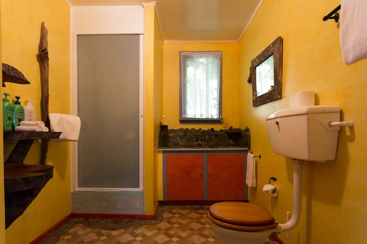This cottage got its own bathroom and toilet.