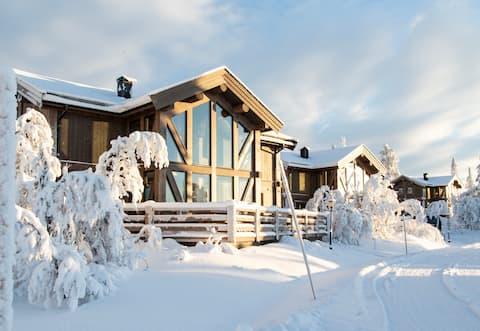 Prabangus namas Švedijos laukinėje gamtoje
