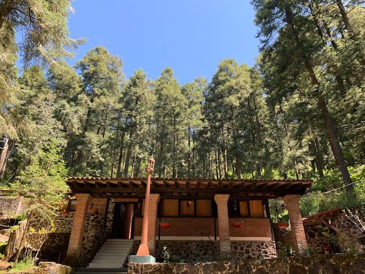 Cabaña Rústica en Villa Alpina: Villa Julieta.