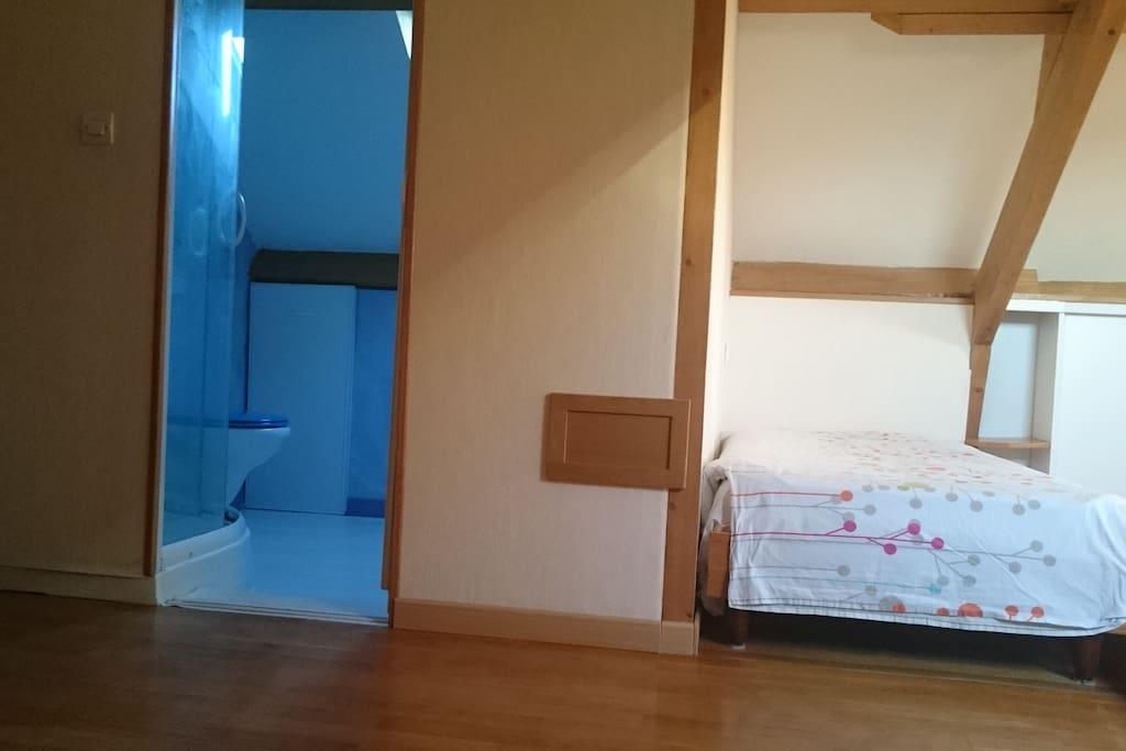 chambre calme et lumineuse chambres d 39 h tes louer orl ans centre val de loire france. Black Bedroom Furniture Sets. Home Design Ideas
