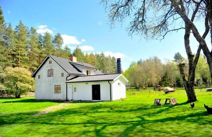 The authentic Sweden at a horsefarm