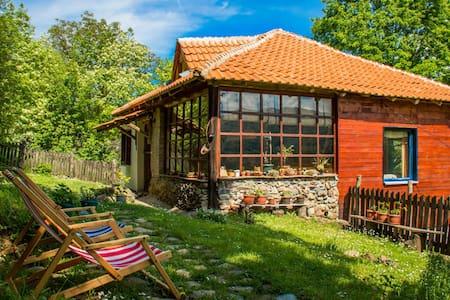 Seoska Kuca - Village House - Balta Berilovac