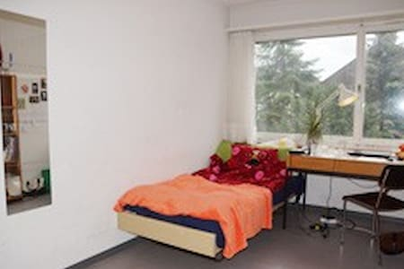 Private Room for Students! - Dietikon - Byt