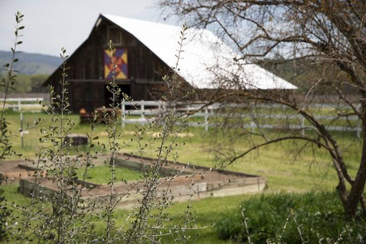 The historic barn painted with The Peace and Plenty quilt pattern