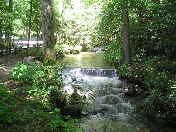 Black Mountain Forest Retreat near Light Center