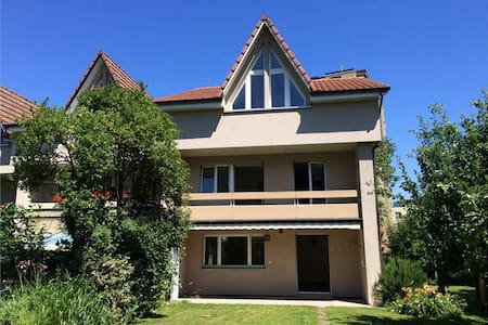 Sunny house close to Basel / Zürich - Stein - 独立屋