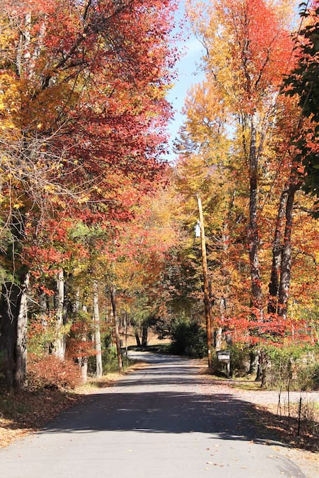Our lane - one of the prettiest in Woodstock