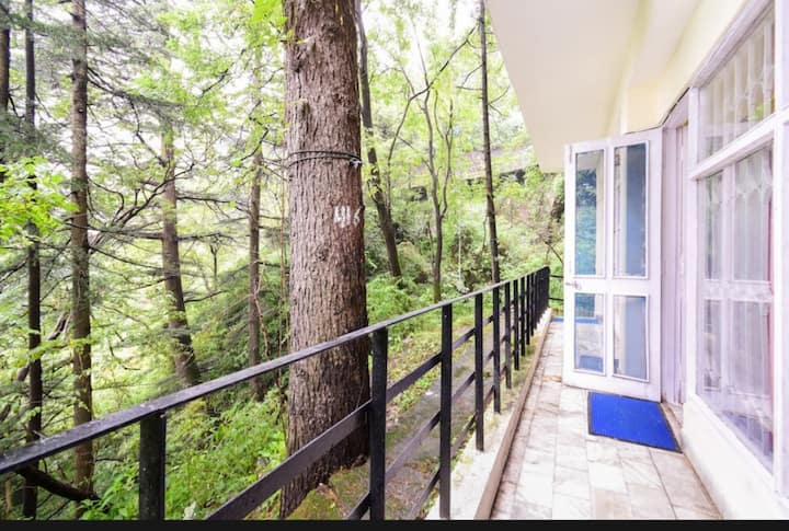 The forest view home.3bhk for you and your family.