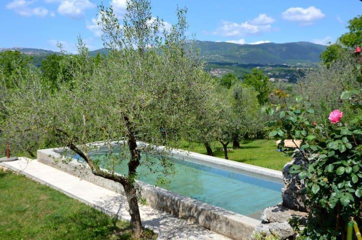 La Casetta  Aia Le Monache - garden, swimming pool - Aia Le Monache - Daire