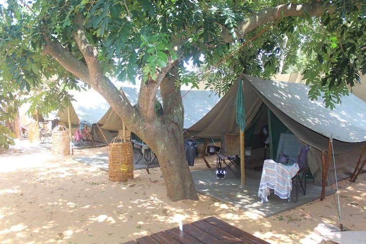 DEVOCEAN - Budget Tent - B&B