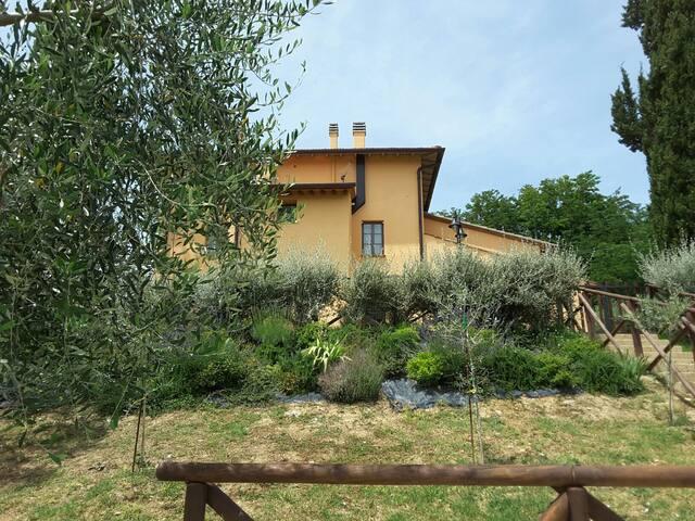 "apartament in Tuscan Holiday "" La Tinaia """