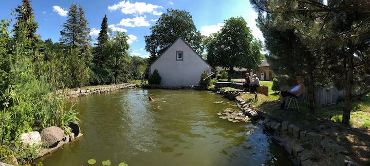 Erholung im Grünen - Lausitzer Seenland