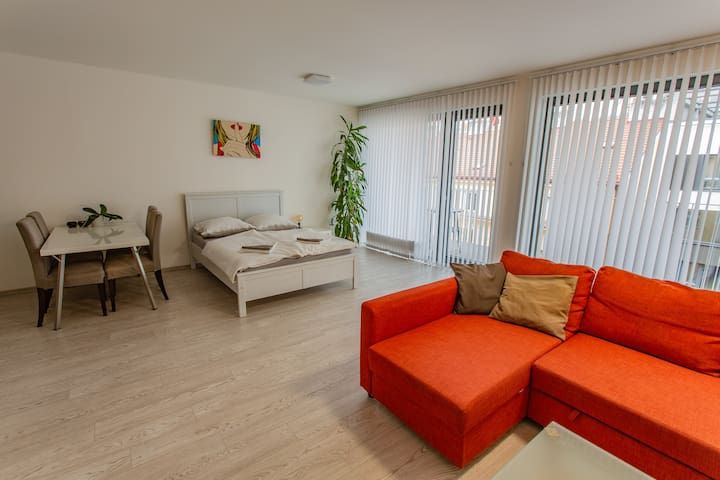 Spacious Terrace Apartment   Free private parking