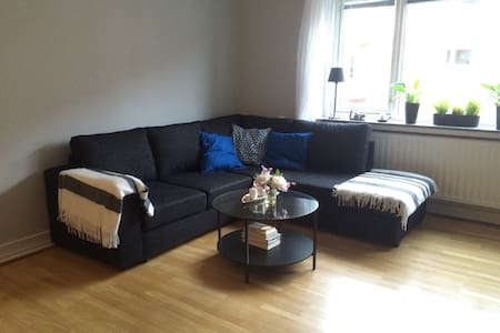 Sofa bed in cozy apt. near downtown - Karlstad