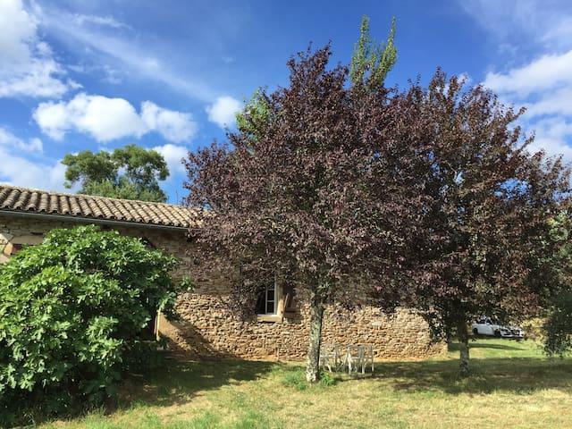 Maison proche Cordes sur Ciel - Saint-Marcel-Campes - House