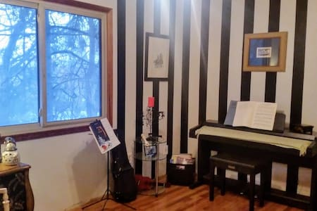 Large bedroom, own bath+ music room - Eagan - House - 2
