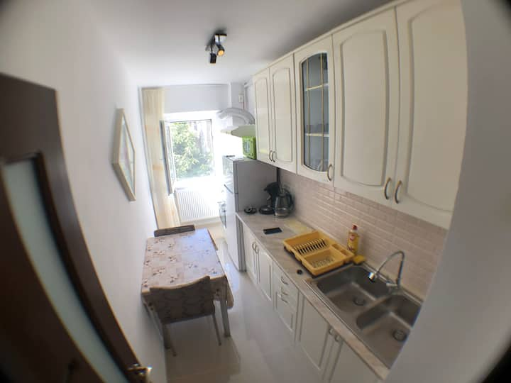 Spatious, quiet studio, large balcony+free parking