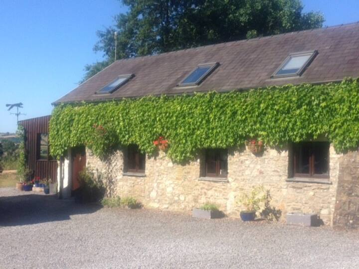 Beili Glas Cottage - Cosy, beautiful Loughor Home!