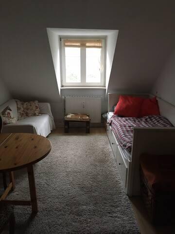 Gemütliches Zimmer + Küche, Bad und Balkon