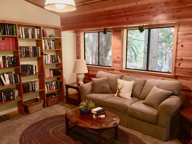 Library loft on 3rd floor with queen sofa bed