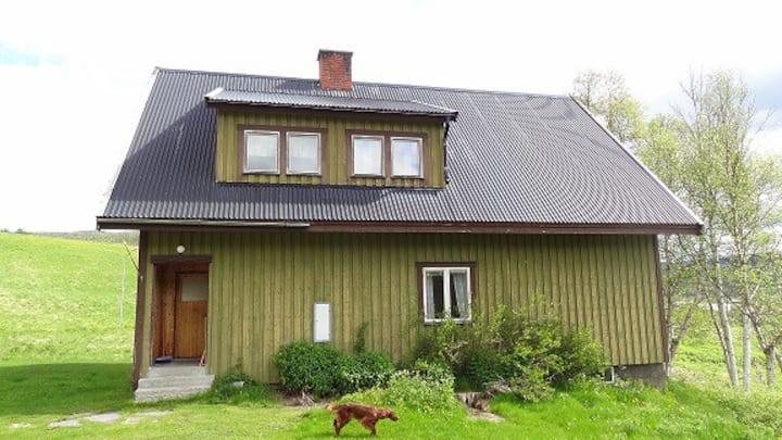 Rymlig villa i Ljungdalen på naturskön gård