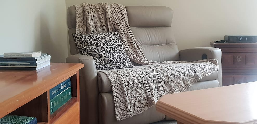 Separate Comfortable Lounge/smart TV area with Netflix and Foxtel