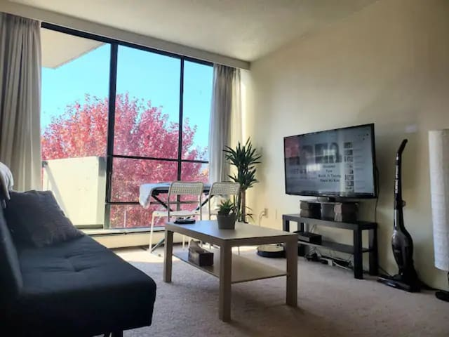 1 BEDROOM NEAR STANLEY PARK AND ENJOY CITY LIFE!!!
