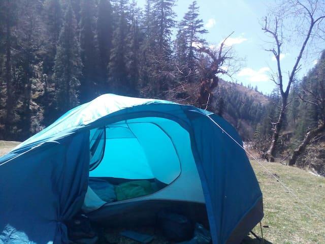 Himalayan River Camping Taluka, With Meals.