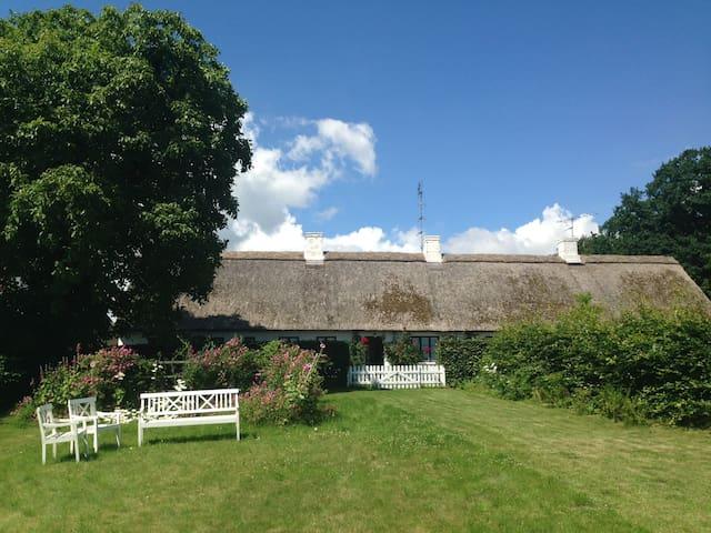Idyl og havudsigt / Idylic + seaview (double room) - Langebæk - Hus