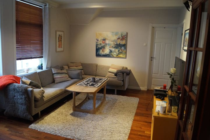 Cosy loft apartment, 5 mins from downtown Ålesund - Alesund - Apartamento