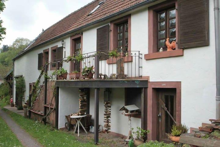 Das ideale Ferienhaus für Wanderer! - Lemberg - Hus
