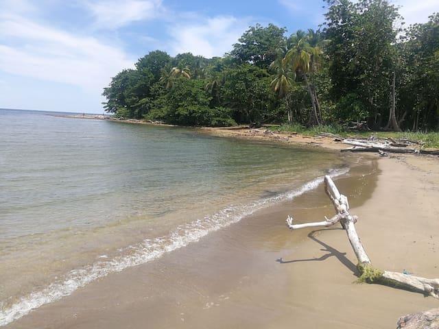 PORTOBELO BEACH ROOMS