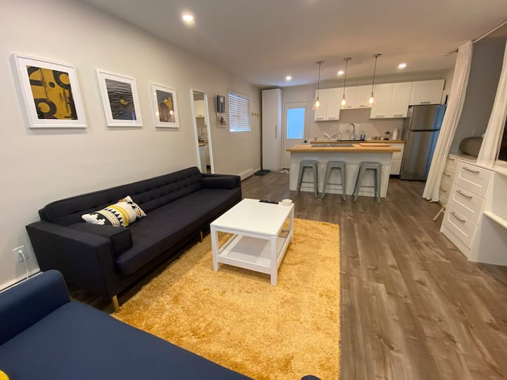 Bright and Newly Renovated Studio Apartment
