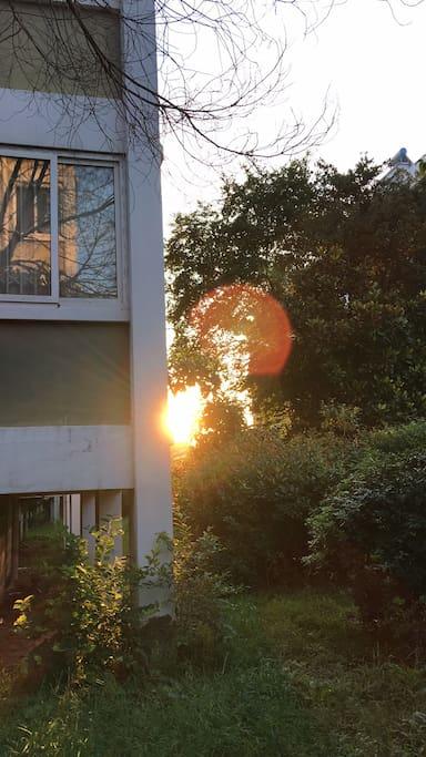 清晨小区看日出