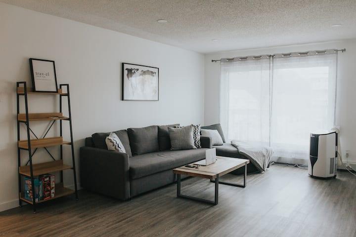 DT 1 Bdrm + Sofa   3 Min to Rogers Place   Parking