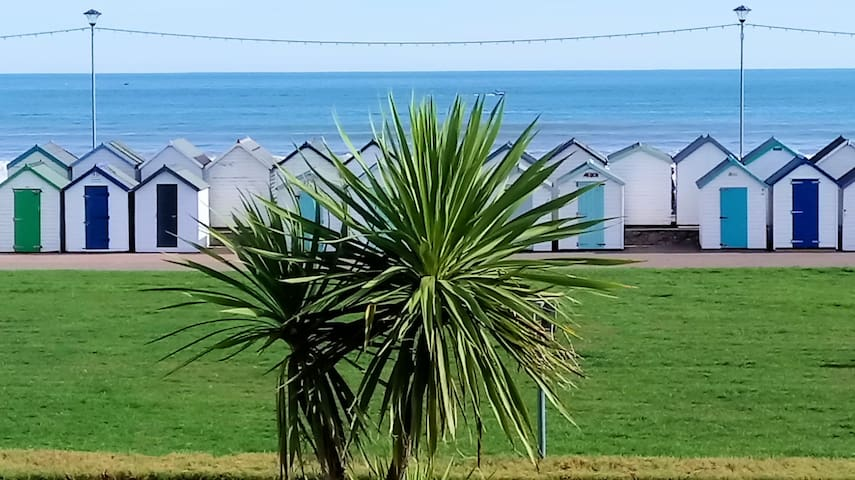 The View. 1 to 4 guests, Preston, Paignton, Devon.