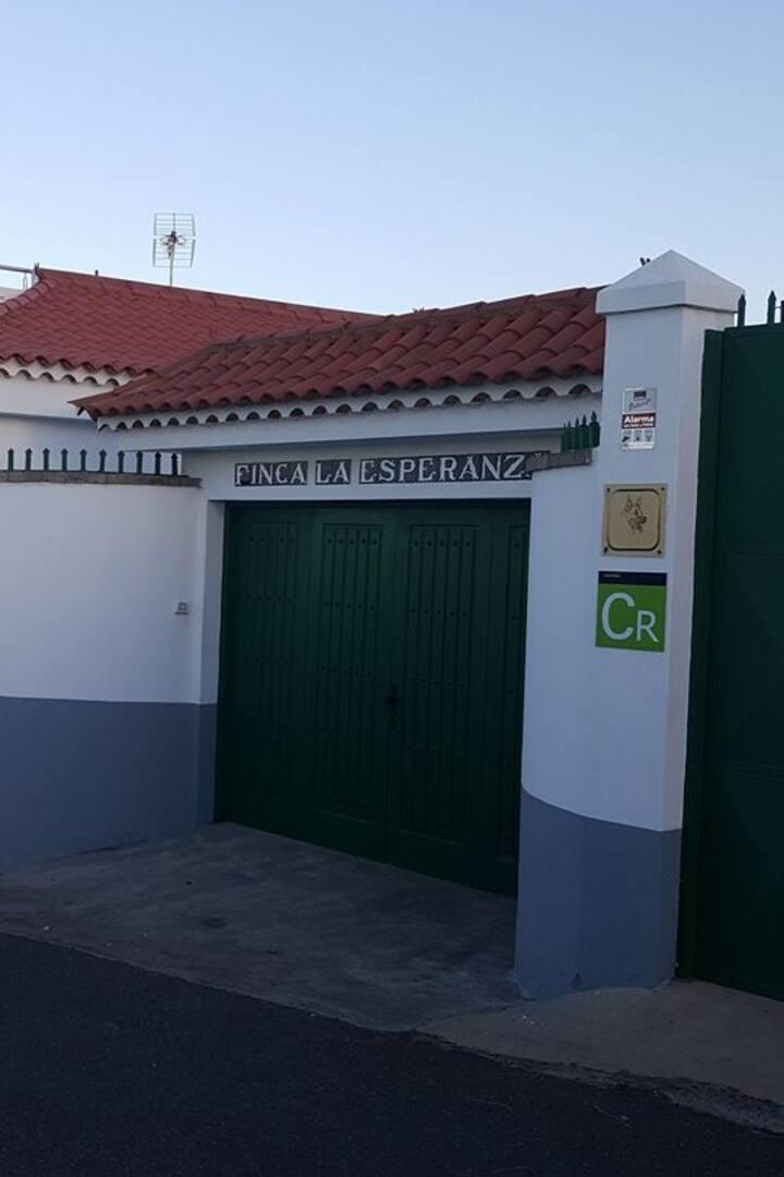 Entrada. Puerta Principal