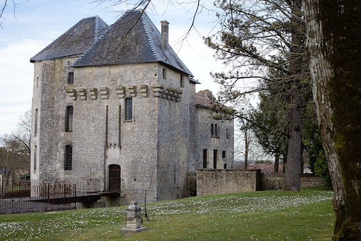 Château de Gourville/chambre tigre - Gourville