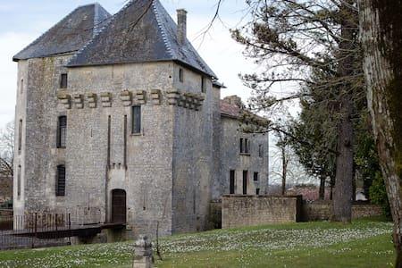 Château de Gourville/chambre tigre - Gourville - Slot