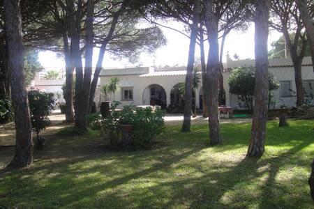 Casa La Felicidad - Chiclana de la Frontera - ที่พักพร้อมอาหารเช้า
