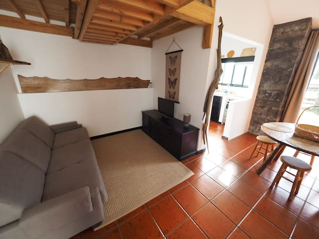 Living area (sofa bed)