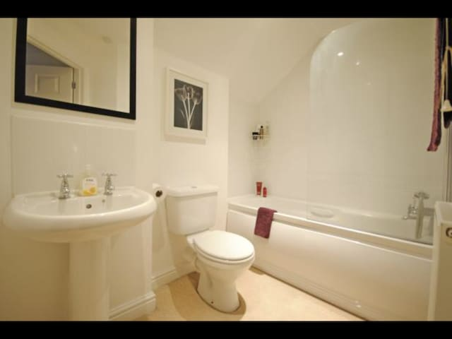 Private room and Bathroom in spacious flat. - Sidmouth - Lejlighed
